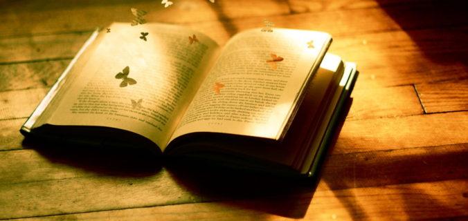 bibliotheque-de-valoux